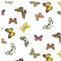 Mantel hule rollo 140cmx20m mariposas