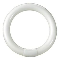 Tubo fluorescente circular tri.22w 216mm