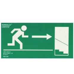 Cartel salida escalera dcha.abajo 21x30